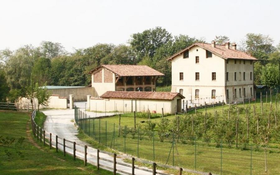 Brusignone2