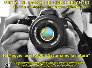 FestaPLIS_Foto