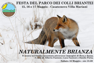 FestaPLIS_NatBrianza