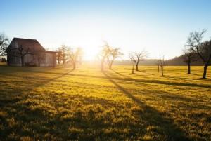 Martesana Food Council, un territorio pronto per l'agroecologia