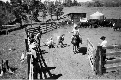 Imbersago cowboy protagonisti del festival western