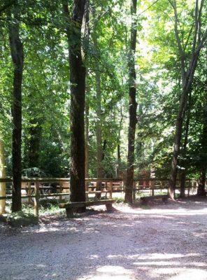 Bosco dell'Itala (Bg)