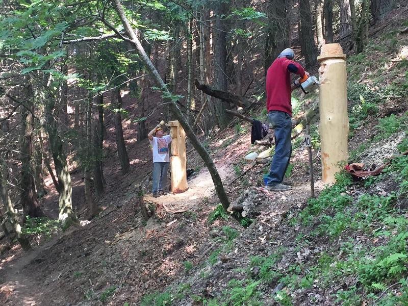 Boscultura 2017 Schignano