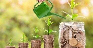 Imparare il mondo degli investimenti in rete